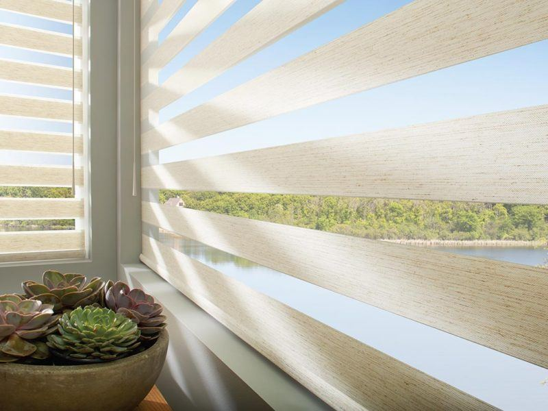 a planter of succulents sits next to a window with Hunter Douglas roller shades