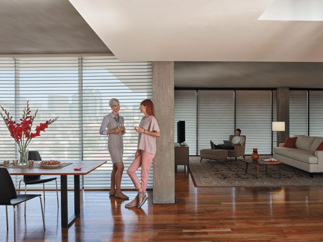 two women standing in a kitchen that has Hunter Douglas Blinds